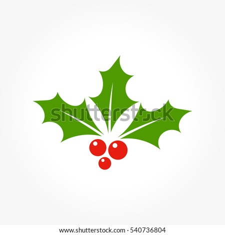 Christmas holly berry leaves icon illustration