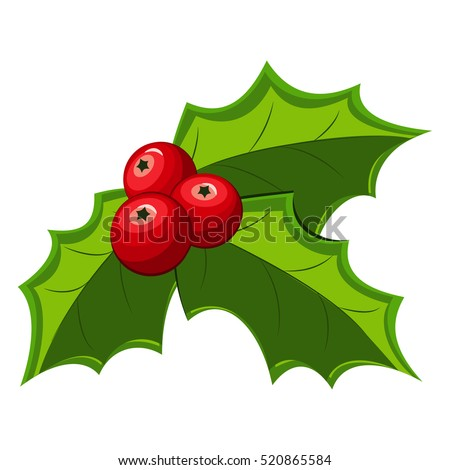 Christmas holly berry leaves illistration. Vector red mistletoe isolated on a white background.