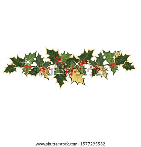 Christmas Holly. vector image of Holly leaves and branches