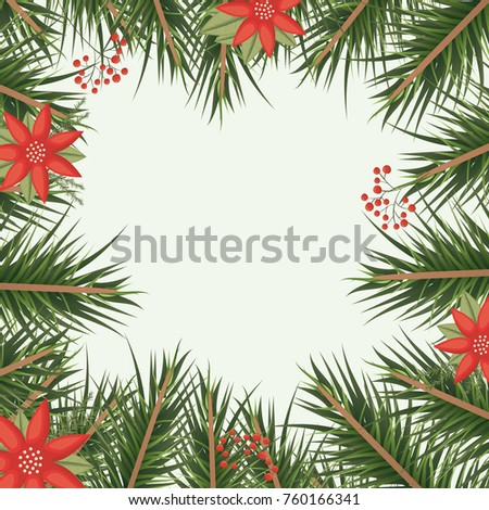 christmas ornament background with colorful pine branches and red flowers #760166341