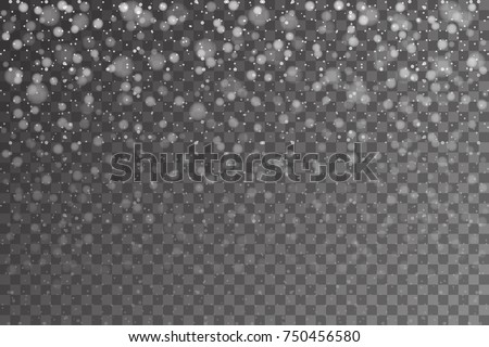Christmas snow. Falling snowflakes on transparent background. Snowfall. Vector illustration, eps 10
