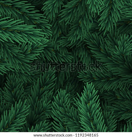 Christmas tree branches. Festive Xmas border of green branch of pine.