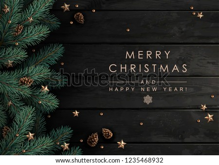 Christmas tree branches with fir-cones, gold stars and beads  on dark wooden   background. #1235468932