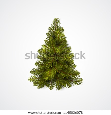 Christmas tree. Green Fir tree isolated on white. Realistic vector icon.