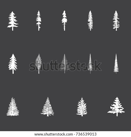 Christmas Trees - Set of vector Christmas Trees in a chalkboard style. Pine trees, Douglas Fir.