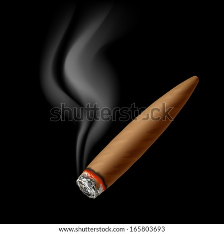 Cigar with smoke. Vector.