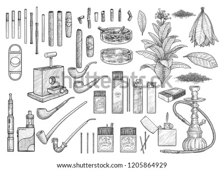Cigarette accessories, equipment collection, illustration, drawing, engraving, ink, line art, vector