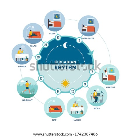 Circadian rhythm and daily activities: daily routine of a woman and sleep-wake cycle, healthy lifestyle concept Foto stock ©