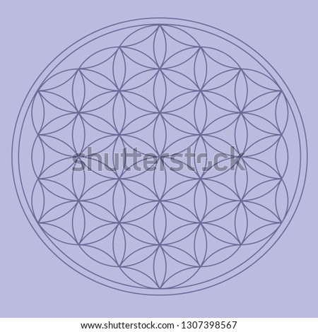 Circle Mesh for unfolding crystals for meditation. Sacred Geometry Flower of Life
