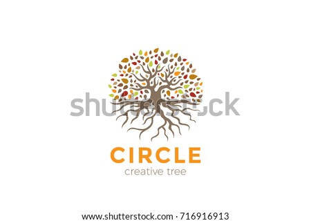 Roots Template | Tree With Roots Template Download Free Vector Art Stock