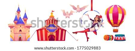 circus stuff and artist big top