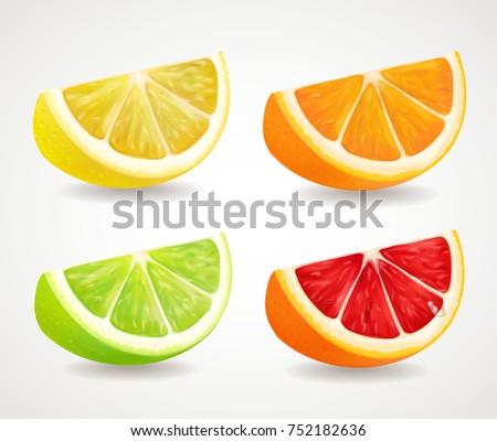 Citrus fresh fruits set. Orange, lime, grapefruit, lemon realistic quarters illustrations