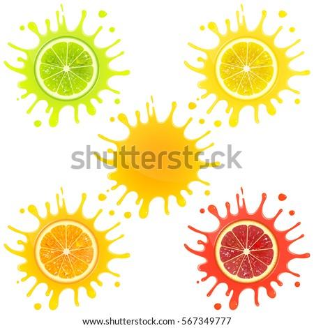 citrus fruit in splashes of