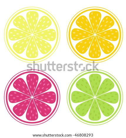 Citrus fruit slices isolated on white background (lemon, lime, orange, grapefruit). Lemon, lime, orange and red grapefruit isolated on white background. Stylized Vector Illustration of fresh fruit.