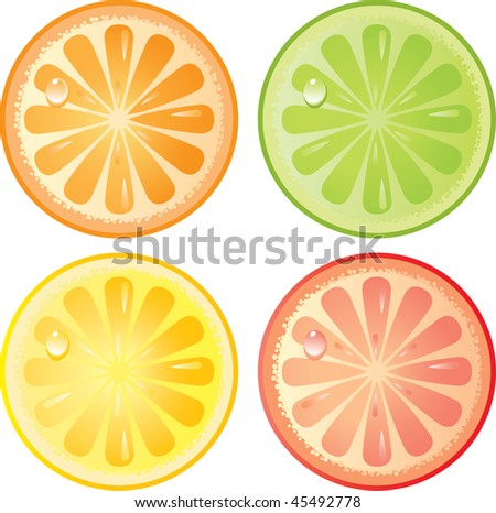 Citrus fruits icon set. Isolated in a white background. Without transparency