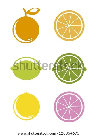 citrus icons over white background. vector illustration