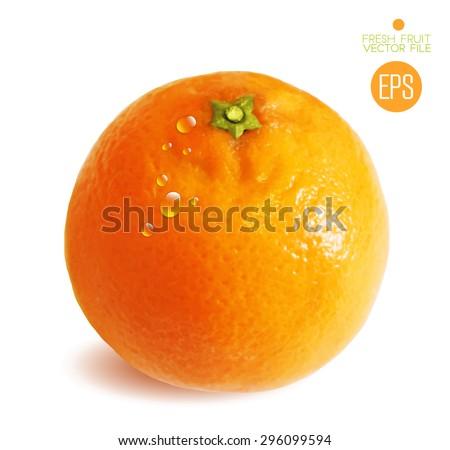 citrus isolated on white