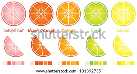 Citrus slices and wedges in vector format complete with swatches.