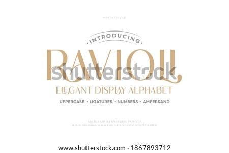 Classic typography elegant. Lettering minimal fashion designs. Alphabet uppercase, ampersand, ligatures. Vector illustration word.
