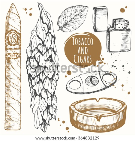 Classical smoking set. Bunch of tobacco and cigars in sketch style. Vector illustration with ashtray, lighter.