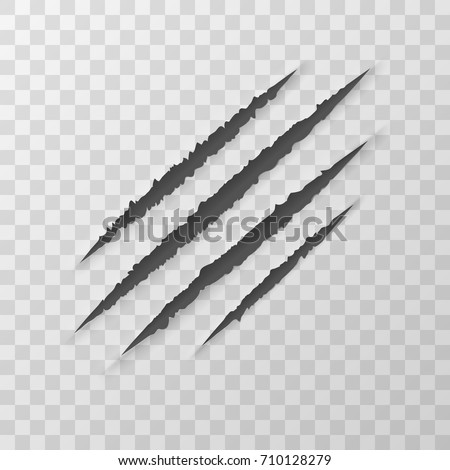 claws animal scratches isolated