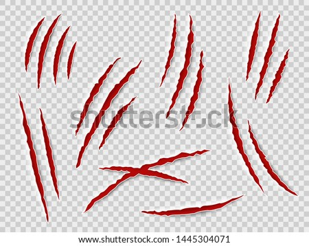 Claws scratches. Animal claw tracks, cat or tiger, bear or lion attack nails scratches. Thriller horror, halloween monster vector scratched marked isolated set
