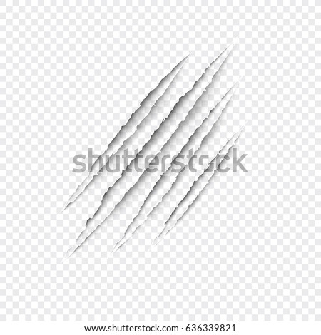 Claws scratches - vector isolated on transparent background. Claws scratching animal (cat, tiger, lion, bear) illustration.