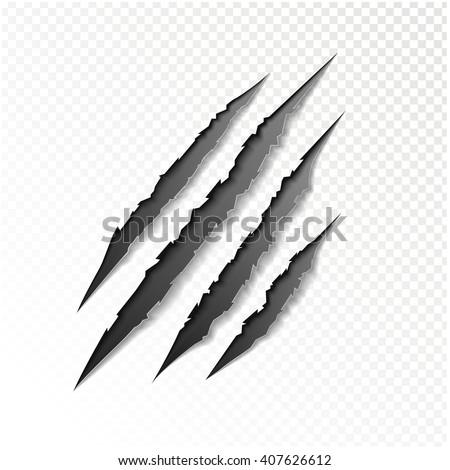 claws scratching animal vector