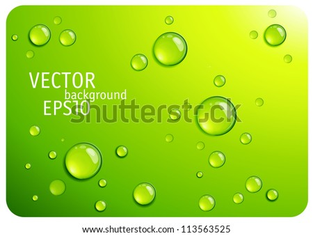 clear green water drops vector