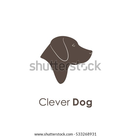 clever portrait of labrador dog