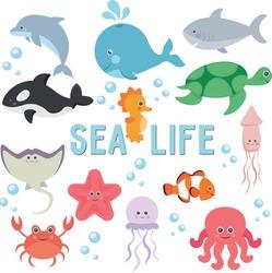 clipart sea life set of illustrations of animals underwater world marine inhabitants