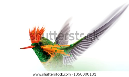 Close up hummingbird tufted coquette Lophornis ornatus in flight on a white background. Vector curves and mesh illustration