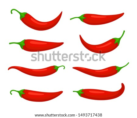 Closeup chilly pepper. Hot red chili peppers, cartoon mexican chilli or chillies illustration, vectors paprika icon signs isolated on white background