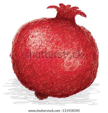 closeup illustration of ripe pomegranate fruit isolated in white background.