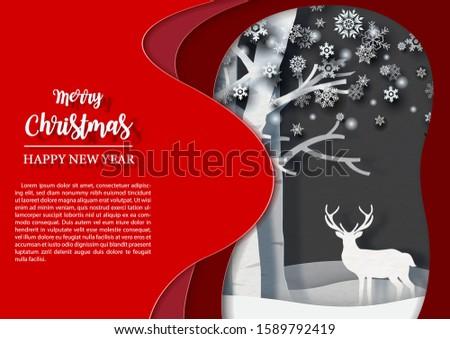 closeup winter season with