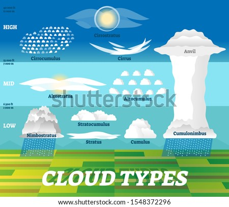 Cloud types vector illustration. Labeled air scheme with altitude division. Nature weather meteorological and geographical info graphic with stratus, cumulus, anvil and cirrus classification examples. Stock fotó ©