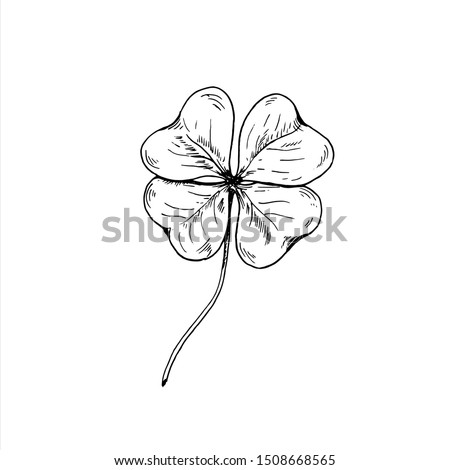 Clover sketch. Hand drawn four leaf clover. Vector illustration, isolated on white. Photo stock ©