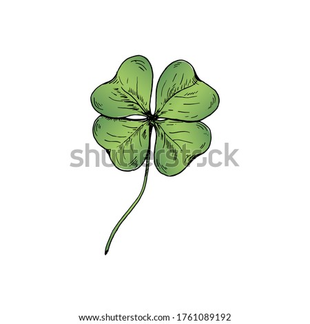 clover sketch hand drawn green