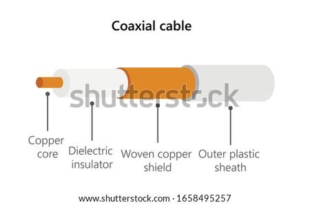 Coaxial cable cutaway vector illustration ストックフォト ©