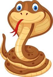 Cobra snake cartoon
