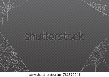 Cobweb background  for Halloween design.  Vector illustration