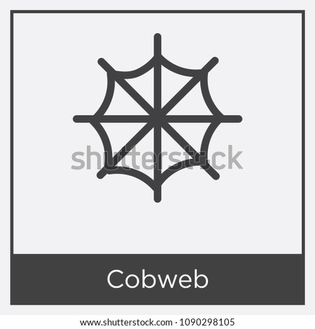Cobweb icon isolated on white background with gray frame, sign and symbol