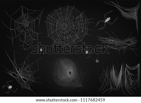 Cobweb set isolated on black transparent alpha background. Spiderweb for Halloween design. High quality spider web horror halloween design decor.