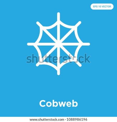 Cobweb vector icon isolated on blue background, sign and symbol
