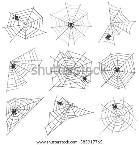 Cobweb with the spider, cobweb icon, spider, spin a web. Flat design, vector illustration, vector.