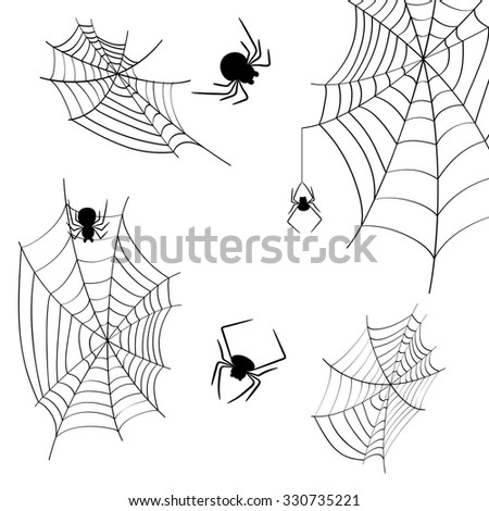 cobwebs and spiders on a white background