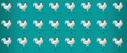 Cock Walk Cycle  animation sequence, loop animation sprite sheet