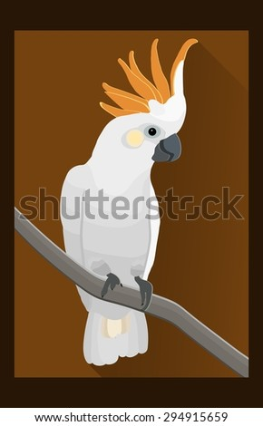 Cockatoo parrot, exotic bird in flat style - vector illustration