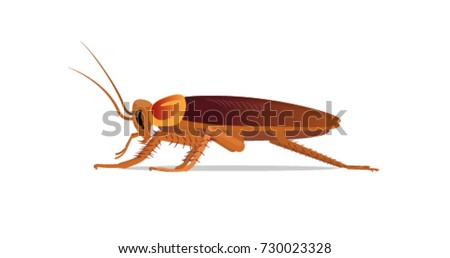 Cockroach. Vector illustration