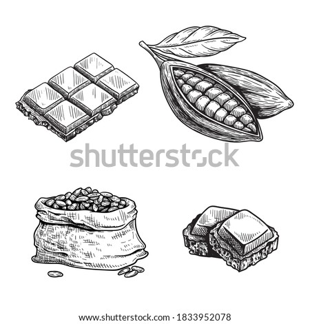 Cocoa and chocolate set. Hand drawn sketch drawings. Chocolate bar and pieces, cocoa pod and cocoa beans bag. Retro style vector illustrations collection.